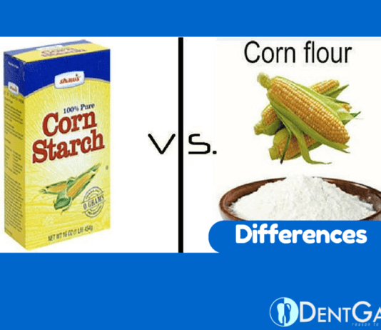 Cornstarch vs Corn Flour Worldwide What is Difference between them